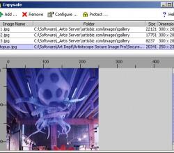 Copysafe Web 4.0
