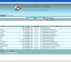 Business Intelligence Synchro 12.0.8