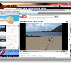Beach Life Theme for Firefox 1.0
