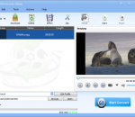 Lionsea DVD Converter Ultimate 4.6.2