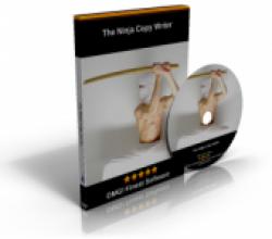 The Ninja Copy Writer 2012Q2