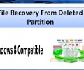 File Recovery From Deleted Partition 4.0.0.32