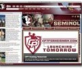Florida State Seminoles IE Browser Theme 0.9.0.1