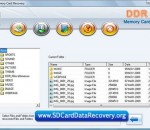 SD Card Data Recovery 4.8.3.1