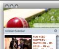 Cricket Firefox Theme 1.0