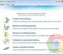 Backup for Chrome 2012