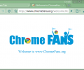 Dark Seagreen Google Chrome Theme 1.00