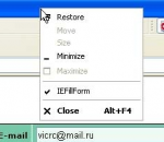 Web form filler IEFillForm 3.0