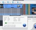 WinX DVD Ripper Platinum 7.3.4