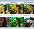 VisionLab VC++ 5.0.3