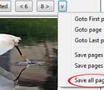 Flickr Downloader 1.0.0 Build 284