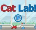 Cat Lab!