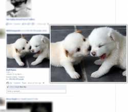 FB Photo Zoom for Firefox
