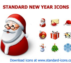 Standard New Year Icons 2013.2