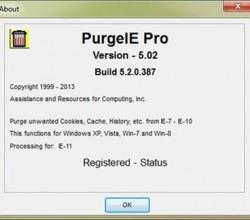 PurgeIE Pro 5.02