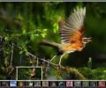 ASP.NET Image Gallery 3.0