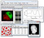 ImageJ 2.1.4.7 i1