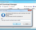 Microsoft Download Manager 1.2.1 Build2044
