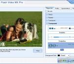 Moyea Flash Video MX Pro 6.0.1.1104