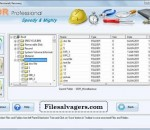 File Salvage Software 4.0.1.6