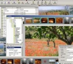 CodedColor PhotoStudio Pro 7.0.0