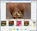 SlideShow Maker Freeware 1.1.01