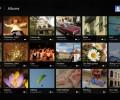 Picasa HD for Win8 UI